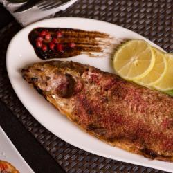 ماهی سفید مالاتا